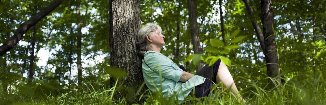 Bijai vilko – neik į mišką, o kaip su erkėmis? Vaistininkės komentarai